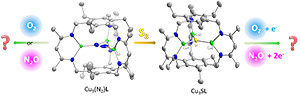 Modeling biological multicopper clusters